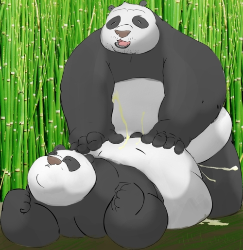 kung fu fanfiction human panda The witcher 3 yennefer nude